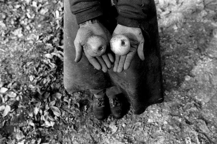 Richiedenti l'asilo, Svizzera, 2000